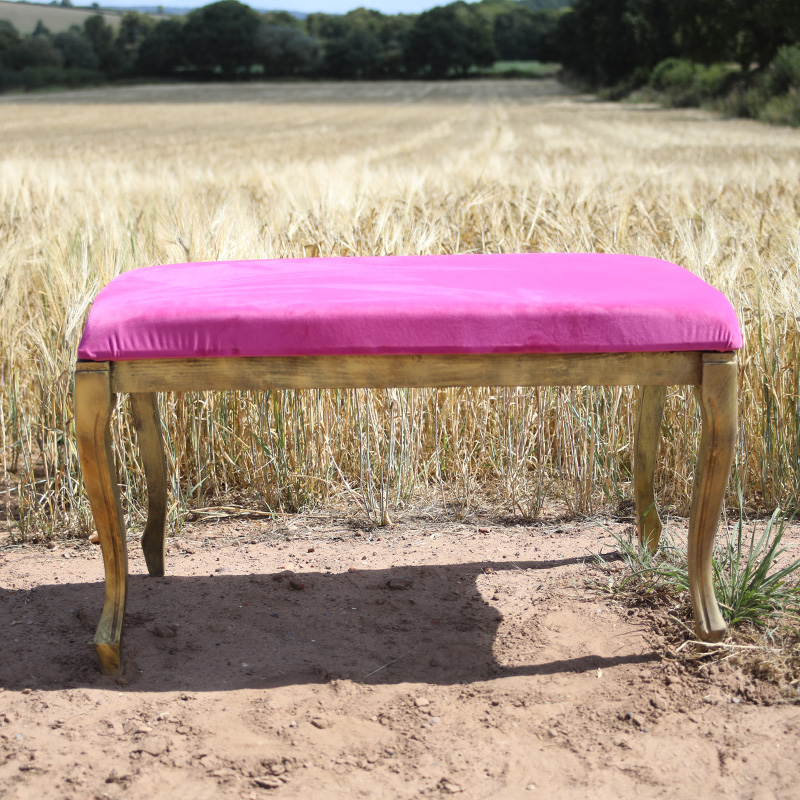 Hot Pink and Gold Ottoman Stool