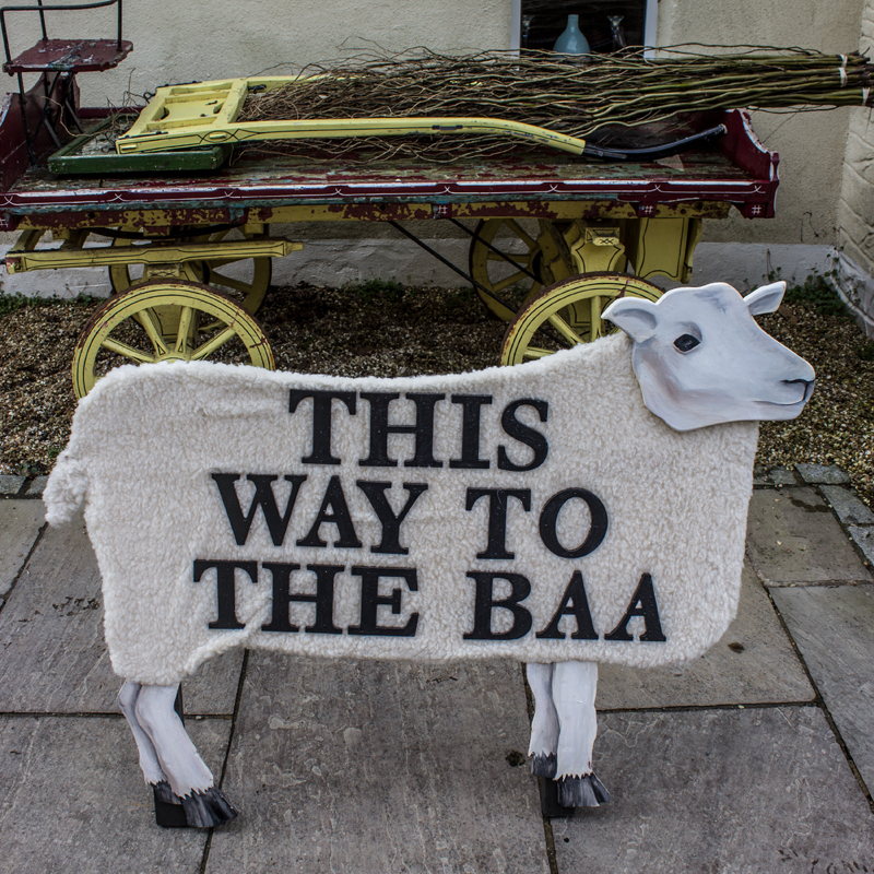 This Way To The Baa Sheep Sign