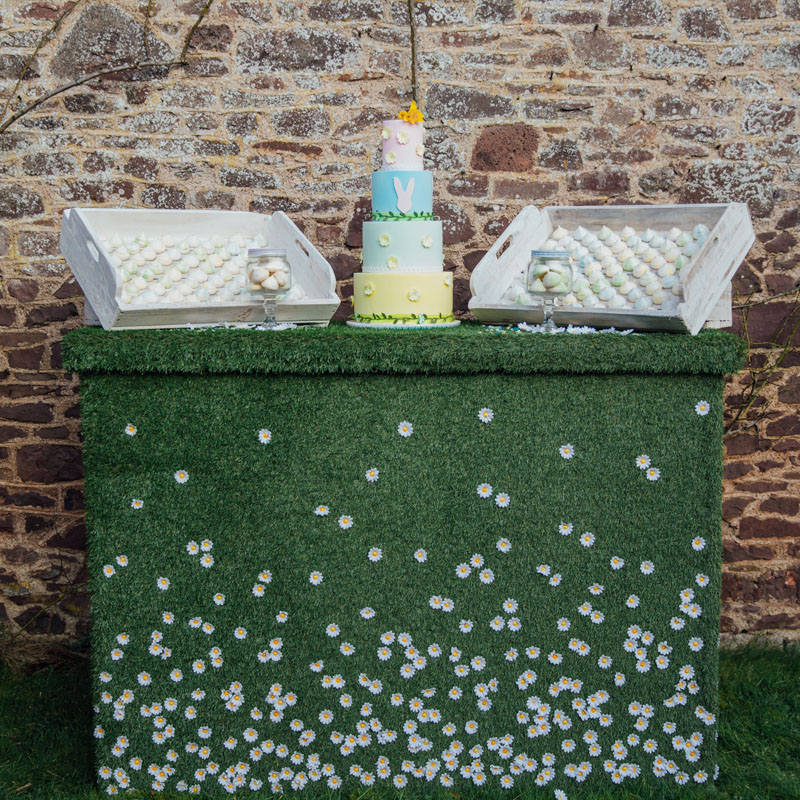 Grass and Daisy Bar